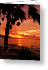 Sunset At Off The Wall Greeting Card