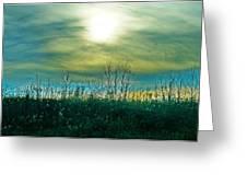 Sunset At Rapp Park Greeting Card