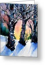 Sunset Birches On The Rise Greeting Card