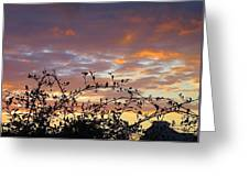 Sunset Colors To The West Greeting Card