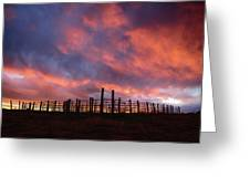 Sunset Corral Greeting Card