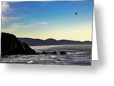 Sunset Eagle Greeting Card