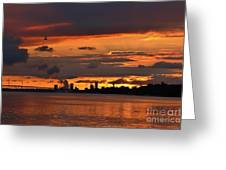 Sunset Flight Of The Tern Greeting Card
