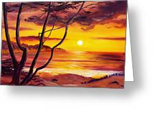 Sunset From A Carmel Cypress Tree  Greeting Card