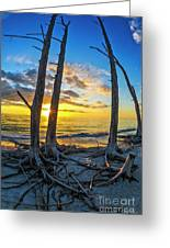 Sunset From Lovers Key, Florida Greeting Card
