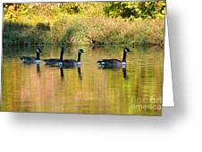 Sunset Goose Greeting Card