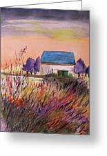 Sunset Grasses Greeting Card by John Williams