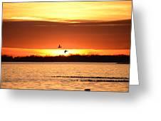 Sunset In Orange Greeting Card