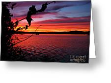 Sunset In Pennsylvania Greeting Card