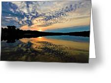 Sunset In The Pinelands  Greeting Card