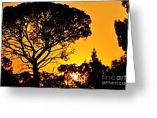 Sunset In Tujunga Greeting Card