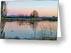 Sunset In Union Bay Greeting Card