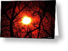 Sunset In Virginia Greeting Card