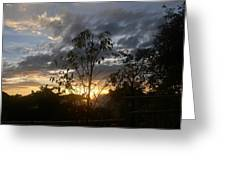 Sunset Leaves 5 Greeting Card
