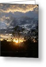 Sunset Leaves 6a Greeting Card