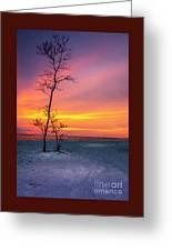 Sunset Light Greeting Card