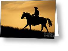 Sunset Meadow. Greeting Card