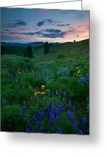 Sunset Meadow Trail Greeting Card