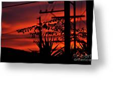 Sunset On Socal Suburb Greeting Card