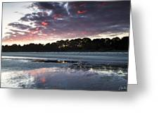 Sunset On South Forest Greeting Card