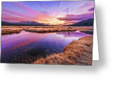 Sunset On Sparks Marsh Greeting Card