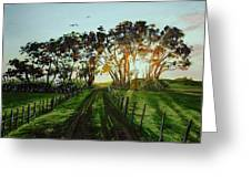 Sunset On The Farm Greeting Card
