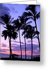 Sunset On The Palms Greeting Card by Debbie Karnes