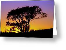 Sunset On The Rim Greeting Card