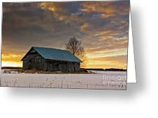 Sunset On The Snowy Fields Greeting Card
