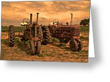 Sunset On The Tractors Greeting Card
