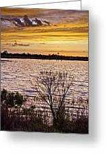 Sunset On The Wetlands Greeting Card