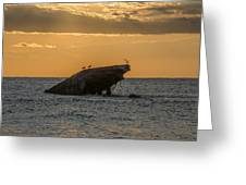 Sunset On The Wreck Of The Concrete Ship Atlantus Greeting Card