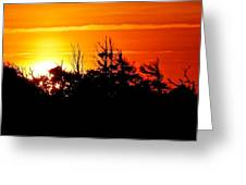 Sunset Over Hatteras Maritime Forest Greeting Card