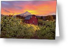 Sunset Over Mt Hood And Red Barn Greeting Card