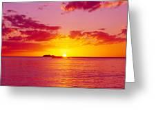 Sunset Over The, Atlantic Ocean, Cat Greeting Card
