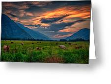 Sunset Over The Pasture Greeting Card