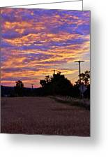 Sunset Over The Wheat Fields Greeting Card
