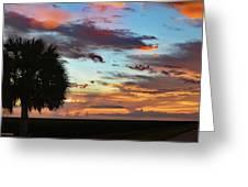 Sunset Palm Florida Greeting Card
