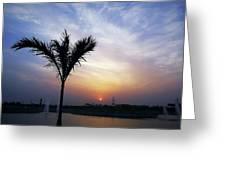 Sunset - Palm Tree Greeting Card