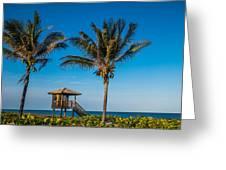 Sunset Palms Delray Beach Florida Greeting Card