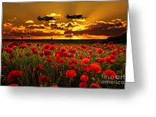 Sunset Poppies Fighter Command Greeting Card