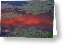Sunset Reflection In Pond Greeting Card