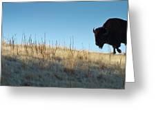 Sunset Ridge Greeting Card by John Blumenkamp