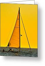 Sunset Sailing Greeting Card by Liz Vernand