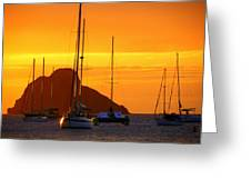 Sunset Sails Greeting Card