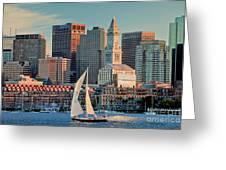 Sunset Sails On Boston Harbor Greeting Card