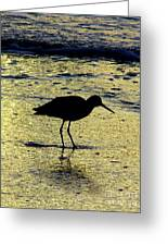 Sunset Sandpiper Greeting Card