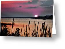Sunset Scene Greeting Card
