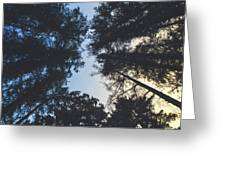 Sunset Shadows Greeting Card