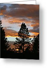 Sunset Silhouette Greeting Card by Donald Tusa